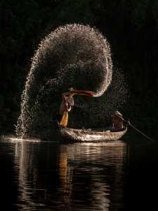 PhotoVivo Honor Mention e-certificate - Kin Seng Mok (Malaysia)  Splash