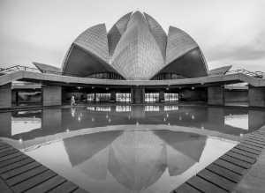 PhotoVivo Gold Medal - Ranajabeen Nawab (India)  Lotus Symmetry