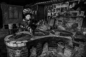 PhotoVivo Gold Medal - Xiaoqing Chen (China)  Cook