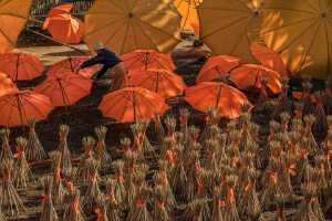 APAS Gold Medal - Liansan Yu (China)  Umbrella