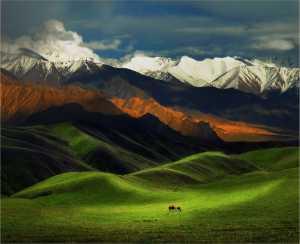 Circuit Merit Award e-certificate - Yi Wan (China)  Tianshan Grassland