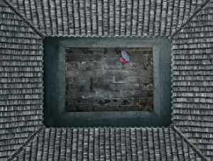 PhotoVivo Gold Medal - Aizhen Jiang (China)  Jiangnan Rainy Season