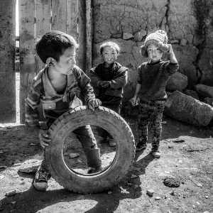PhotoVivo Gold Medal - Pinguan Zheng (China)  Little Friends