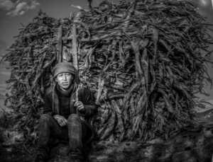 PhotoVivo Gold Medal - Sisong Yang (China)  Carry Firewood