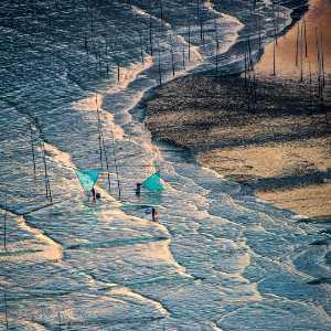 Circuit Merit Award e-certificate - Zenghua Liu (China)  Fishing In The Mud 3
