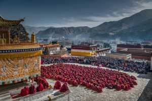 PhotoVivo Gold Medal - Xiuli Wang (China)  Monastic Assembly