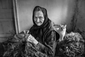PhotoVivo Gold Medal - Michele Macinai (Italy)  Working The Wool 2