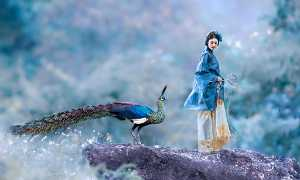 APU Gold Medal - Jiangchuan Tong (China)  The Peacock And The Beauty