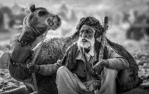 Circuit Merit Award e-certificate - Guisen Li (China)  Camel Old Man