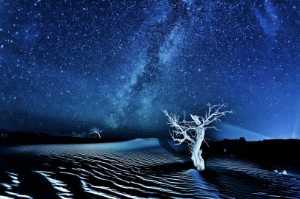 PhotoVivo Gold Medal - Yungang Wang (China)  Starry Night 1