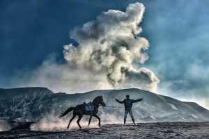 APAS Honor Mention e-certificate - Say Boon Foo (Malaysia)  Horse Rider 3
