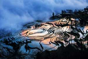 PhotoVivo Gold Medal - Zenghua Liu (China)  Terraces 3