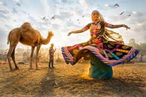 Circuit Merit Award e-certificate - Tan Tong Toon (Malaysia)  Dances With Camels