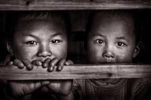 PhotoVivo Honor Mention e-certificate - Yan Wong (China)  Brothers