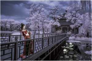 APU Honor Mention e-certificate - Lee Eng Tan (Singapore)  Dunhuang Fairy