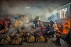 PhotoVivo Gold Medal - Ling Gan (China)  Cook Beans