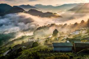 PhotoVivo Gold Medal - Changjian Fang (China)  Morning Light