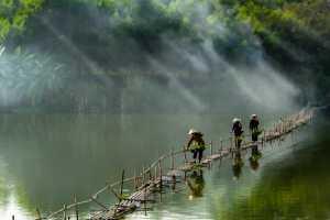 PhotoVivo Honor Mention e-certificate - Vu Lam Thao (Vietnam)  Way To Market