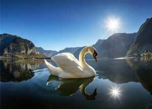 APAS Bronze Medal - Chen Chong (China)  Swan Lake-1