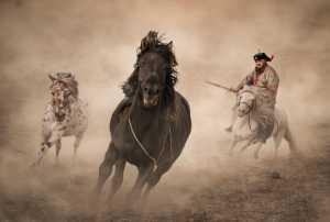 Raffles Gold Medal - Changren Yu (China)  Herdsman 4