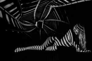 PhotoVivo Gold Medal - Que Tan (China)  Shadow