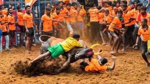 Circuit Merit Award e-certificate - Udaya Thejaswi Urs (India)  Bull Tammers