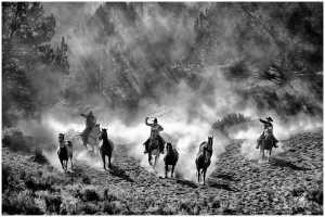 PhotoVivo Gold Medal - Thomas Lang (USA)  Old West Venture 08-01
