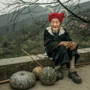 PhotoVivo Gold Medal - Zhijian Lv (China)  Harvest