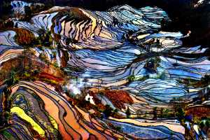 ICPE Gold Medal - Tong Hu (China)  The Earth Is Pictursque