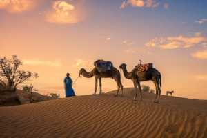 Circuit Merit Award e-certificate - Bob Chiu (China)  Desert Visitors 3
