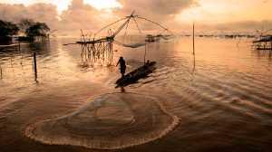 PhotoVivo Gold Medal - Tat Seng Ong (Malaysia)  Sunrise Fishing