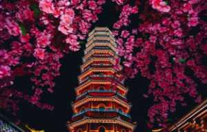 APAS Gold Medal - Yunxiang Gu (China)  Flower And Tower