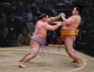 APU Spring Merit Award E-Certificate - Chin Leong Teo (Japan)  Sumo Wrestling 2