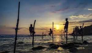 PSA HM Ribbons - Wen Zhong (China)  Fishing
