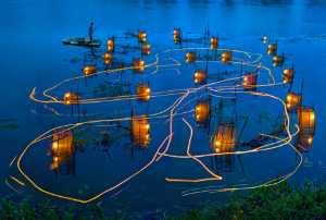 APAS Gold Medal - Tong Hu (China)  Sparkling Fishing Light
