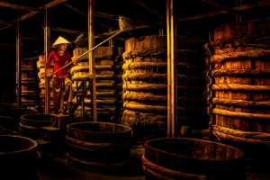 PhotoVivo Honor Mention e-certificate - Teck Boon Lim (Singapore)  Rvnm Fish Sauce Stairs