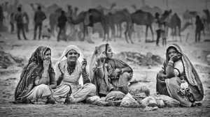 PhotoVivo Gold Medal - Tan Tong Toon (Malaysia)  Pushkar Gypsies_2