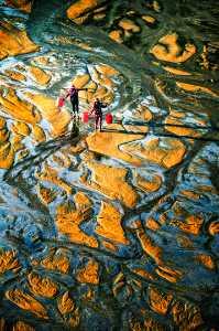 APU Gold Medal - Yijian Chen (China)  Colorful Intertidal Zone