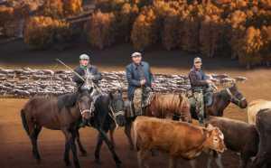 PhotoVivo Gold Medal - Xiang Yu (China)  Leisureliness On Horseback