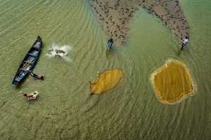 Circuit Merit Award e-certificate - Saurabh Sirohiya (India)  Fishing Time