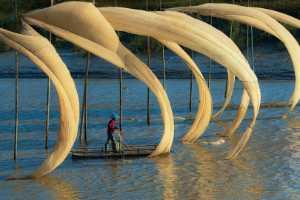 PhotoVivo Gold Medal - Wei Gong (China)  Hang Net