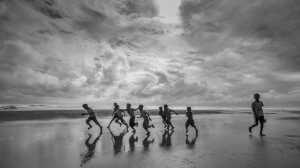 PhotoVivo Gold Medal - Xinmin Zhang (China)  Freedom From Care 1