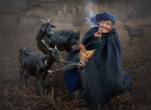 Golden Dragon Photo Award - Ching Ching Chan (Hong Kong) - The Goat Lady