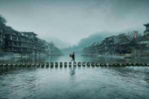 APAS Gold Medal - Mingzai Su (China)  Seek