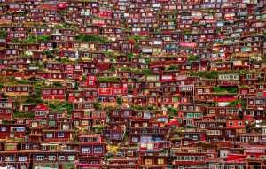 PhotoVivo Gold Medal - Jincheng Zhou (China)  Little Red Wood House
