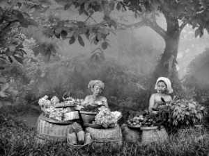 PhotoVivo Gold Medal - Mery Binglie (Indonesia)  Bali Ancient Market