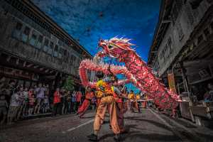 APAS Honor Mention e-certificate - Liew Ted Ghee (Malaysia)  Dragon Dance Festival 2