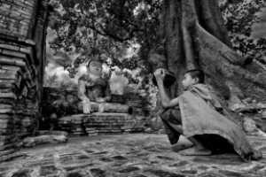 APU Merit Award E-Certificate - Pui-Chung Yee (Singapore)  Ava Monk Under Holy Tree