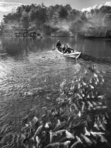 Circuit Bronze Medal - Rasmono Sudarjo (Indonesia)  4.Fish Livestock