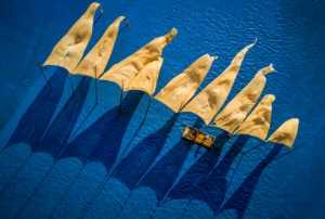 Circuit Merit Award e-certificate - Chaoyang Cai (China)  Flying Canvas